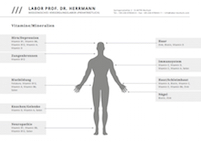 labor-prof-herrmann_infoblatt_vitamine-mineralien