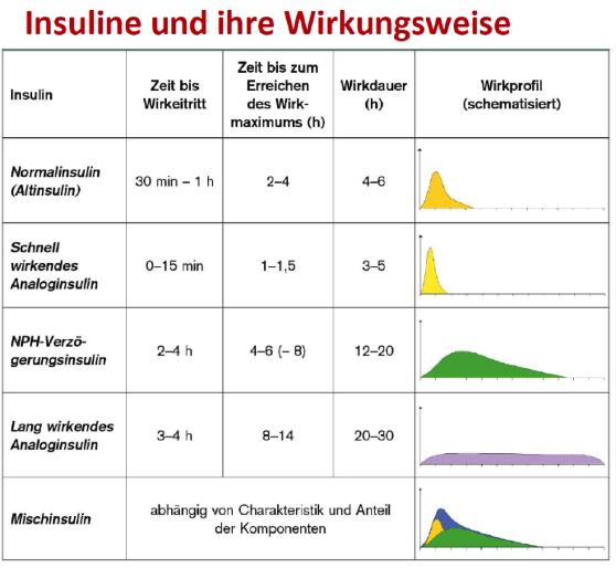 Strategien-zur-Insulintherapie-und-deren-Einsparung-bei-Typ-2-Diabetikern_Tabelle-01